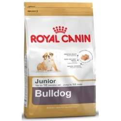 BULLDOG JUNIOR 3KG