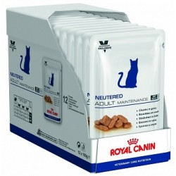 Royal Canin Bustina Adult Maintenance Feline 100gr