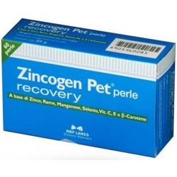 Nbf Lanes Zincogen Pet Perle Recovery 60 Perle